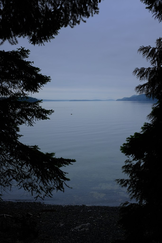 Looking to the South-Southwest from Gray Peninsula on Galiano Island.